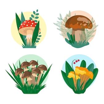 Mashrooms mis illustration