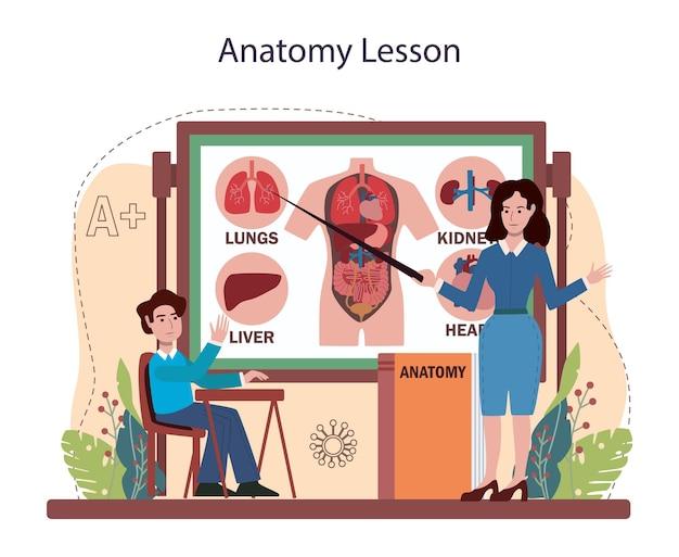 Matière scolaire d'anatomie. étude d'organes humains internes. anatomie