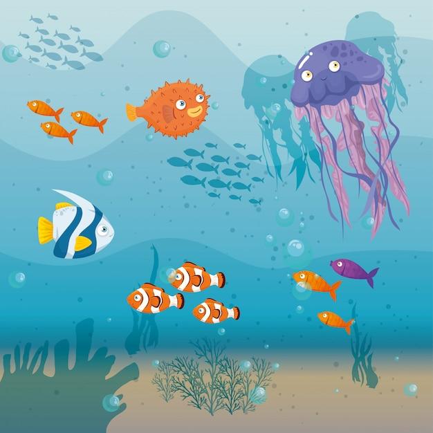 Méduse animale marine dans l'océan, avec des poissons d'ornement, des habitants du monde marin, des créatures sous-marines mignonnes, un habitat marin