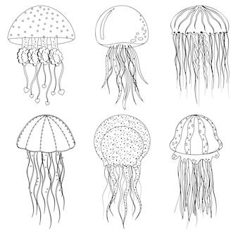 Méduse de mer, contour noir, coloriage, illustration vectorielle