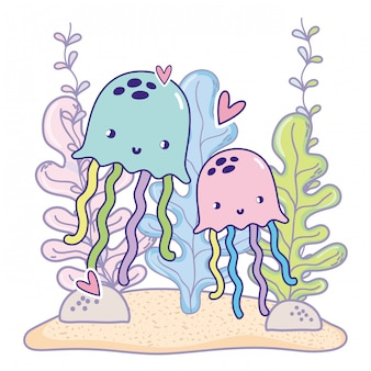 Méduses couple d'animaux avec des coeurs et des plantes d'algues