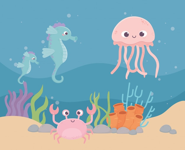 Méduses hippocampes crabe vie récif de corail dessin animé sous la mer