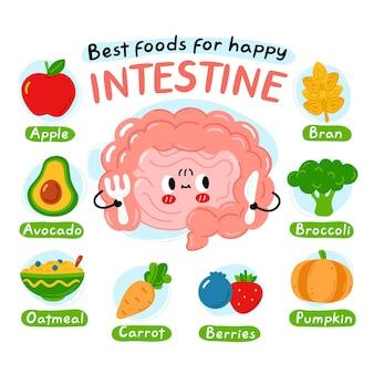 Meilleurs aliments pour une affiche infographique interstine heureuse. caractère mignon d'organe d'intestin. icône d'illustration de caractère kawaii de dessin animé de vecteur. isolé sur fond blanc. nutrition, concept d'alimentation saine