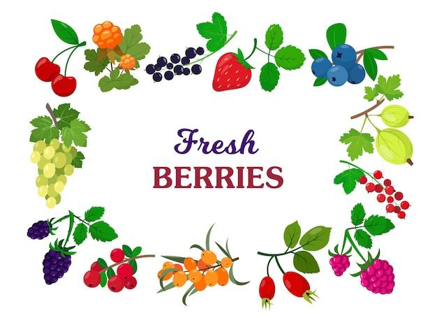 Mélange de baies sauvages et de jardin frais pour menu de vitamines baies d'été biologiques et fruits avec des feuilles