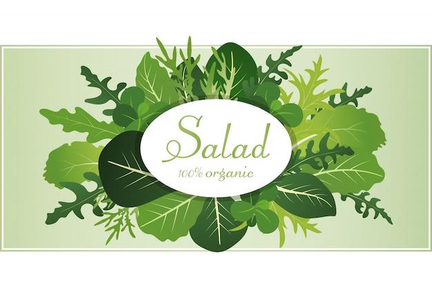Mélange de feuilles de salade. roquette, épinards et feuille de laitue. illustration définie dans un style plat.