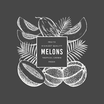 Melons avec modèle de conception de feuilles tropicales.