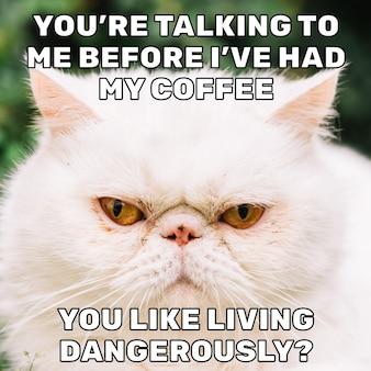 Mème de drame de café