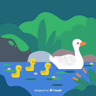Mère canard et ses petits canetons