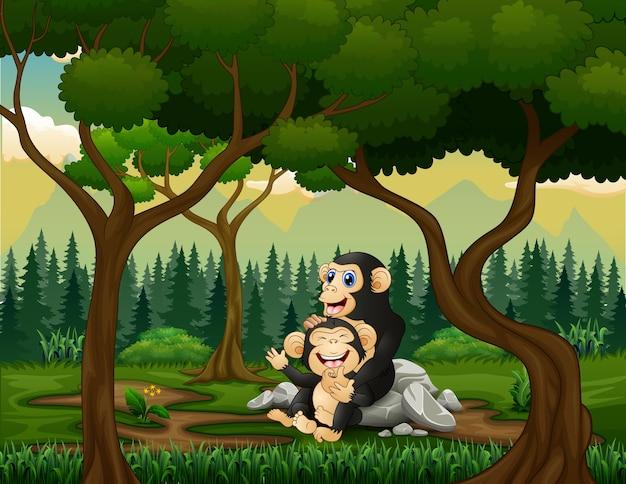 Mère chimpanzé avec son bébé dans la forêt