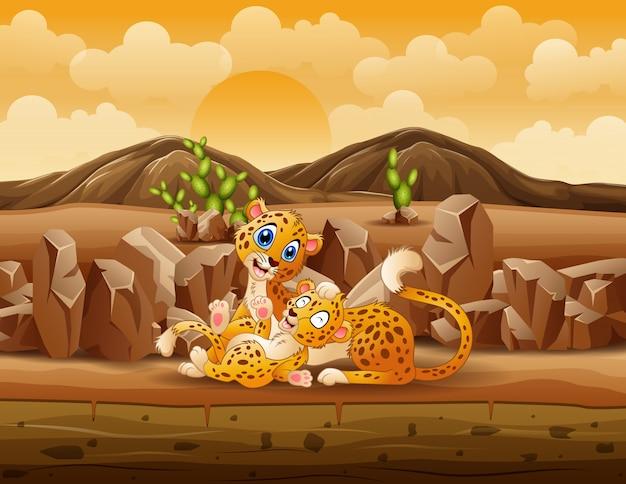 Une mère guépard et cub guépard jouant dans le désert
