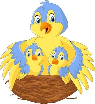 Mère oiseau avec ses deux bébés dans le nid