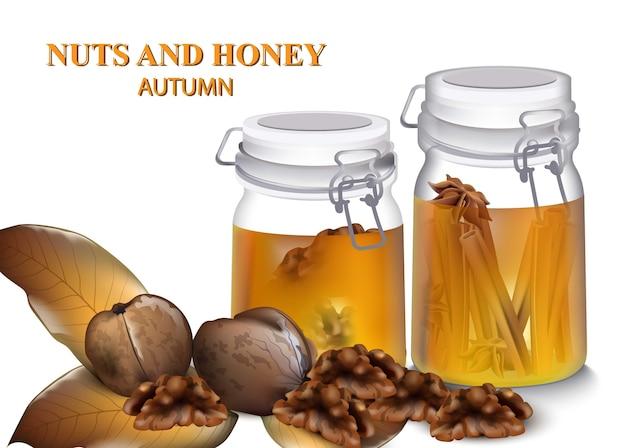Miel et noix grecques vector réaliste