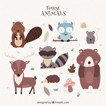 Mignon animaux forestiers dessinés à la main