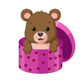 Mignon bébé ours à l'intérieur d'une boîte-cadeau