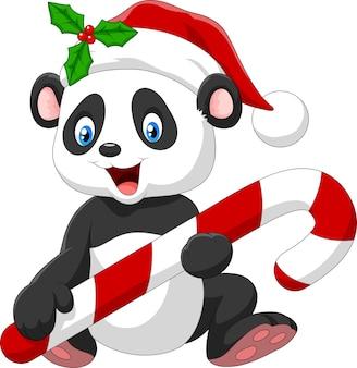 Mignon bébé panda tenant des bonbons de noël