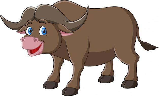 Mignon dessin animé animal buffle du cap africain