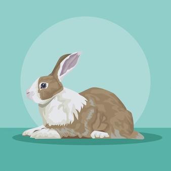 Mignon, lapin, animal, ferme, icône