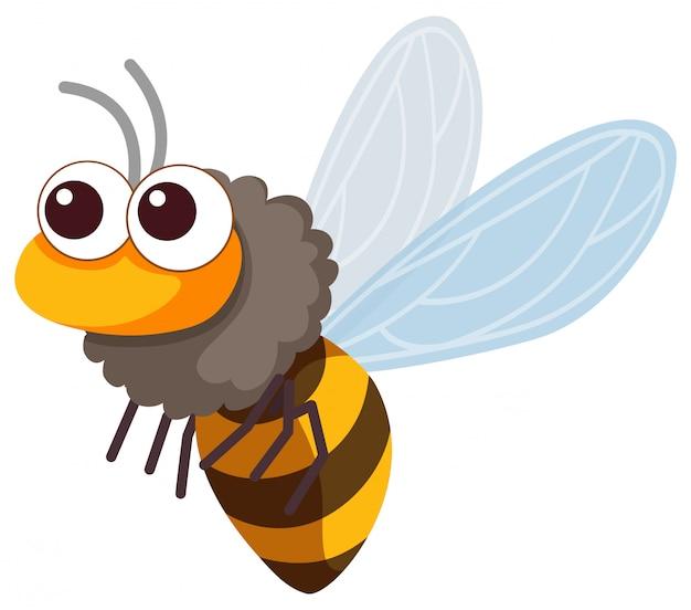 Une mignonne petite abeille volant