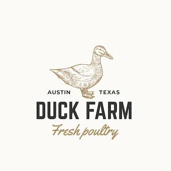 Modèle abstrait signe, symbole ou logo de volaille fraîche de ferme de canard. croquis de sillhouette de canard à gravure dessinée à la main avec typographie rétro. emblème vintage.