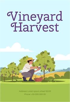 Modèle d'affiche de récolte de vignoble
