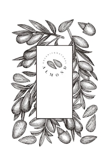 Modèle d'amande de croquis dessiné main. illustration d'aliments biologiques. illustration de noix rétro. fond botanique de style gravé.