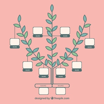 Modèle d'arbre généalogique minimaliste
