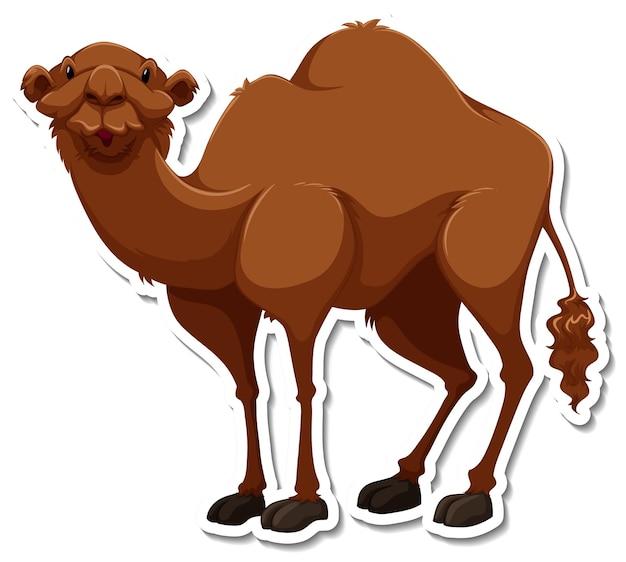 Un modèle d'autocollant de personnage de dessin animé de chameau