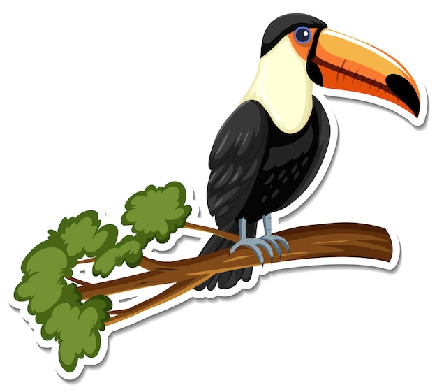 Un modèle d'autocollant de personnage de dessin animé toucan