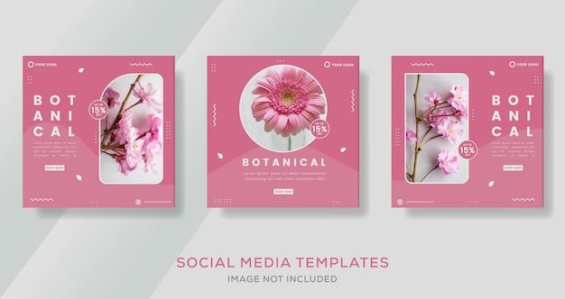 Modèle de bannière botanique de couleur rose pour les médias sociaux instagram post premium vector