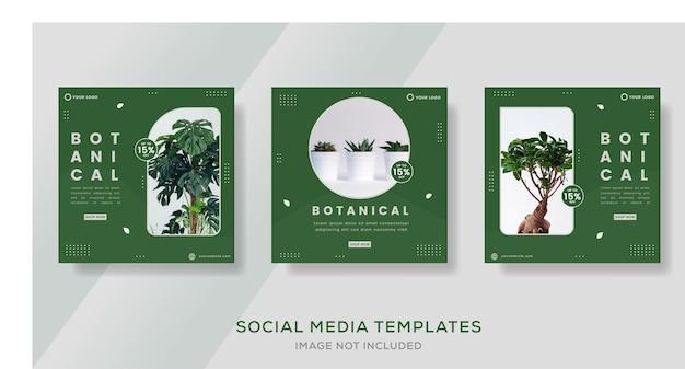 Modèle de bannière botanique pour les médias sociaux post premium