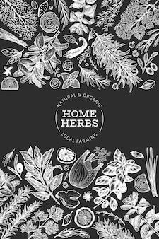 Modèle de bannière d'herbes culinaires