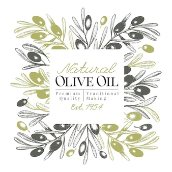 Modèle de bannière d'olivier. illustration rétro de vecteur