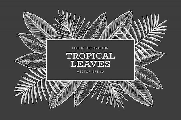 Modèle de bannière de plantes tropicales
