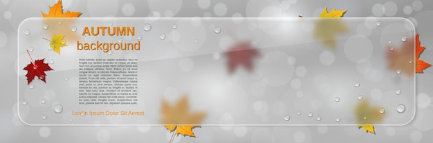 Modèle de bannière de vecteur de style automne. arrière-plan flou abstrait avec des feuilles colorées, un panneau d'affichage en verre et un effet de glassmorphisme