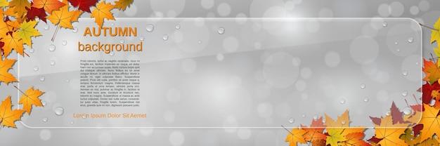 Modèle de bannière de vecteur de style automne. arrière-plan flou abstrait avec des feuilles colorées et panneau d'affichage en verre