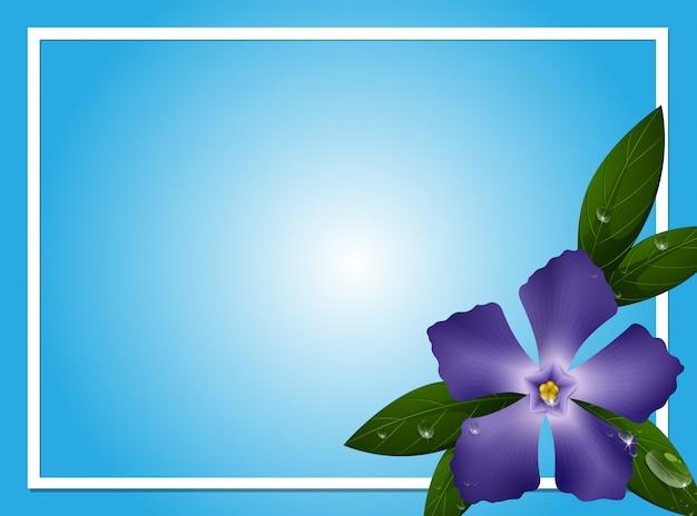 Modèle de bordure avec fleur de pervenche bleue