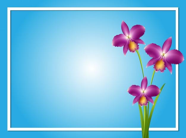 Modèle de bordure avec orchidée pourpre