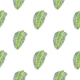 Modèle de botanique sans couture isolé avec impression de feuilles de fougère tropicale. fond blanc. ornement de feuillage exotique.