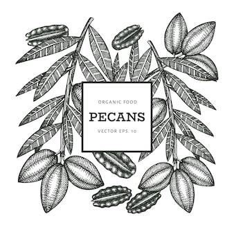 Modèle de branche et de noyaux de noix de pécan dessinés à la main. illustration des aliments biologiques sur fond blanc. illustration de noix vintage. tableau botanique de style gravé.