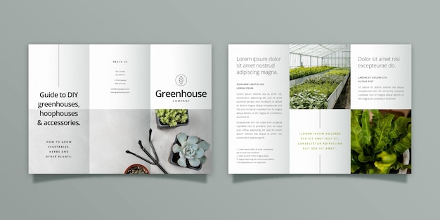 Modèle de brochure à trois volets minimal avec recto et verso