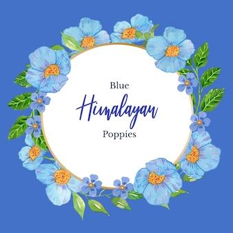 Modèle de cadre classique de pavot himalayen bleu aquarelle