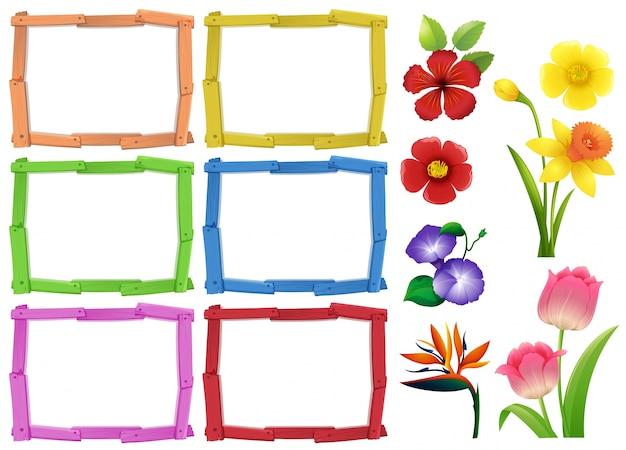 Modèle de cadre avec différents types de fleurs