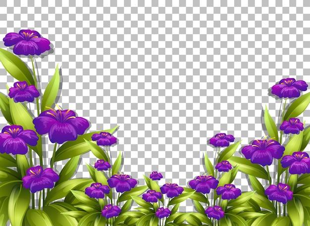 Modèle de cadre de fleur pourpre sur fond transparent