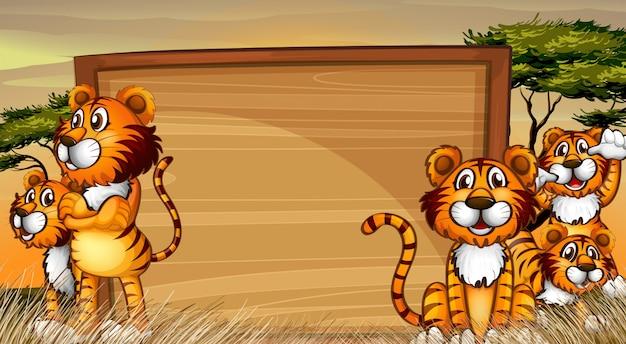 Modèle de cadre avec des tigres sur le terrain
