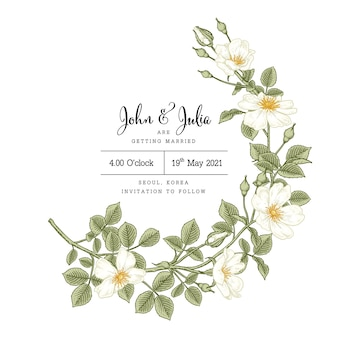 Modèle de carte d'invitation fleur rose chien blanc dessiné à la main (rosa canina).