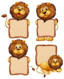Modèle de carte avec lion mignon sur fond blanc