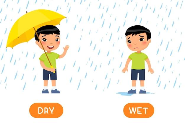 Modèle de carte de mot antonymes humide et sec