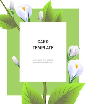 Modèle de carte de voeux avec des crocus blancs sur cadre vert. fête, événement, célébration.