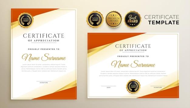 Modèle de certificat de diplôme professionnel dans un style premium