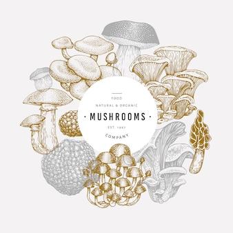 Modèle de champignon.